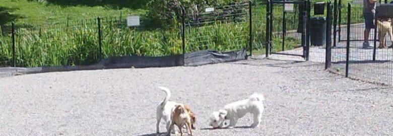 West 72nd Street Dog Run