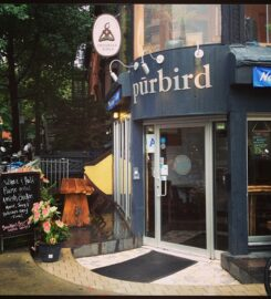 Purbird