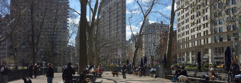 Madison Square Dog Run