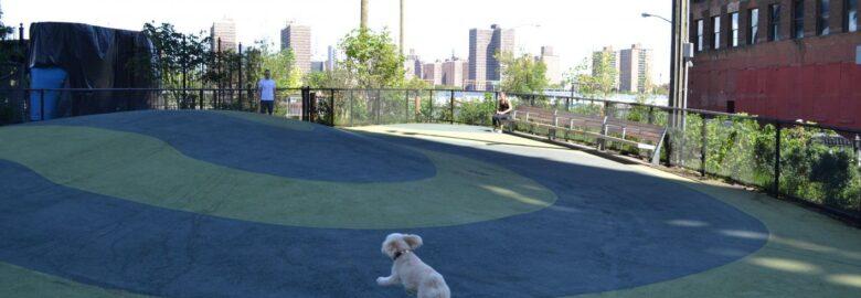 Fish Bridge Park Dog Run