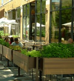 Uncommon Ground (lakeview)