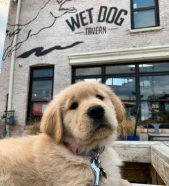 Wet Dog Tavern